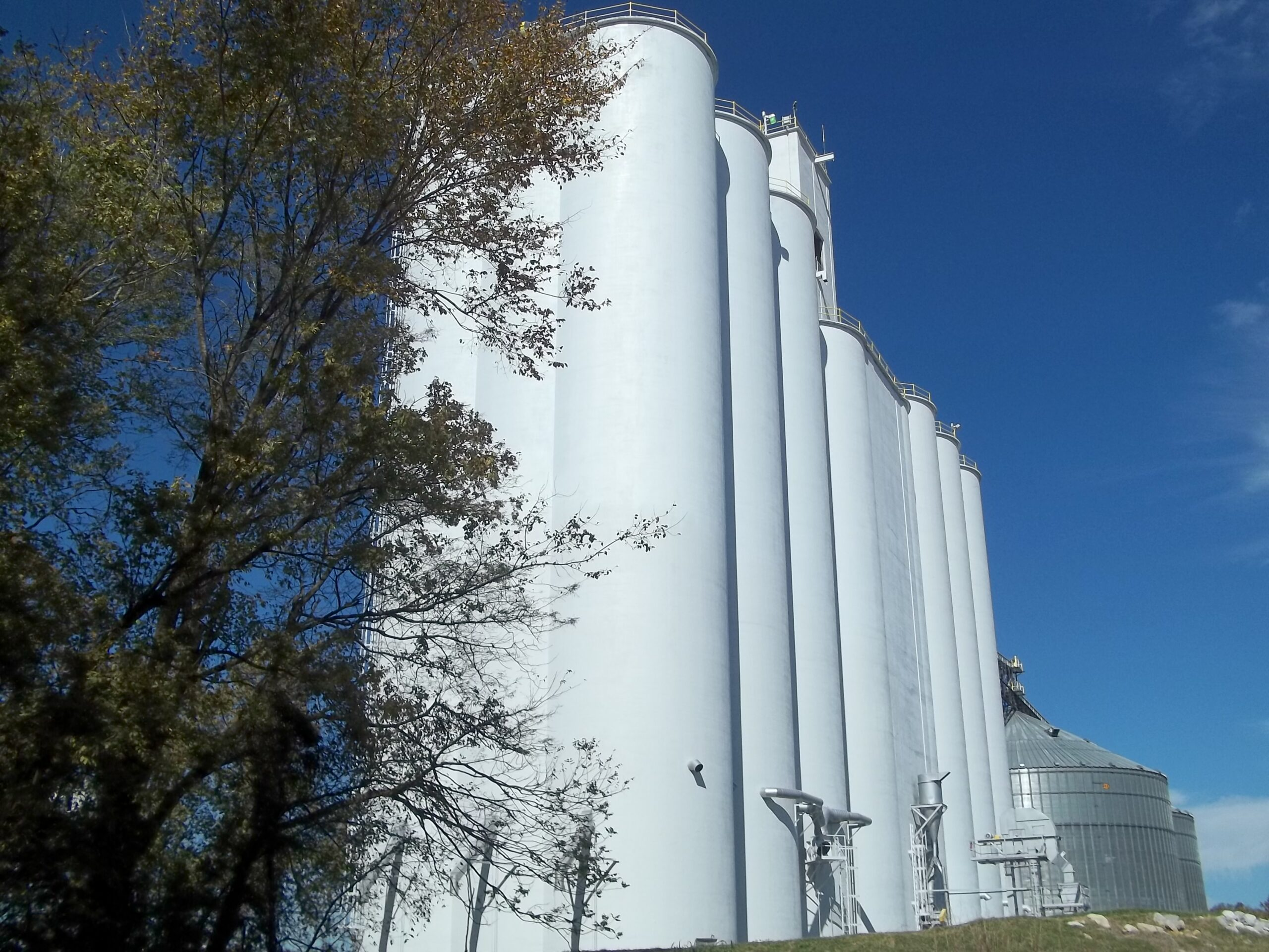 Grain Terminal painting services provided by CJC Painting Inc.